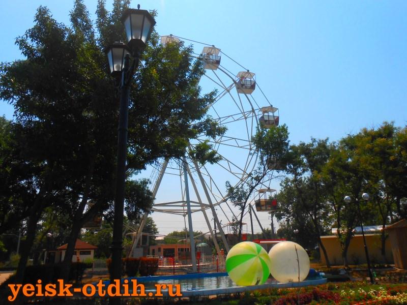 приморский парк 1
