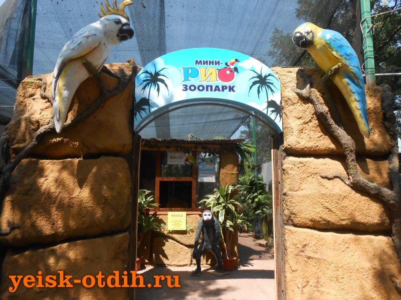 зоопарк рио 1