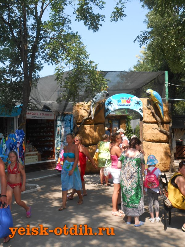 зоопарк рио 3