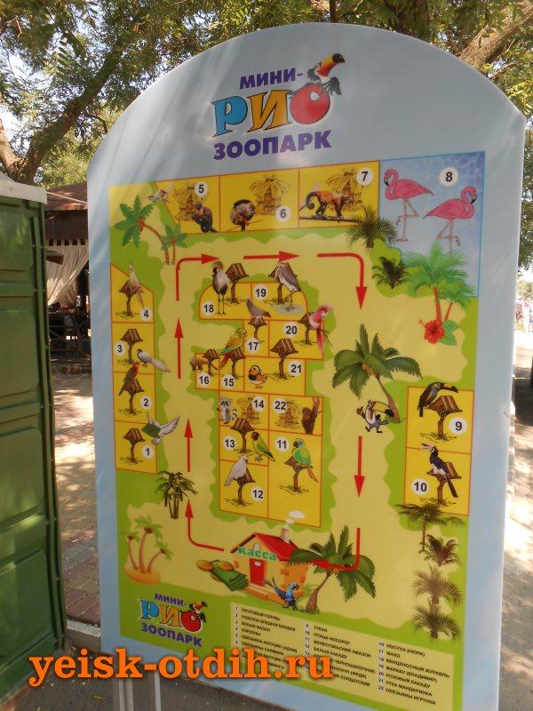 зоопарк рио 4