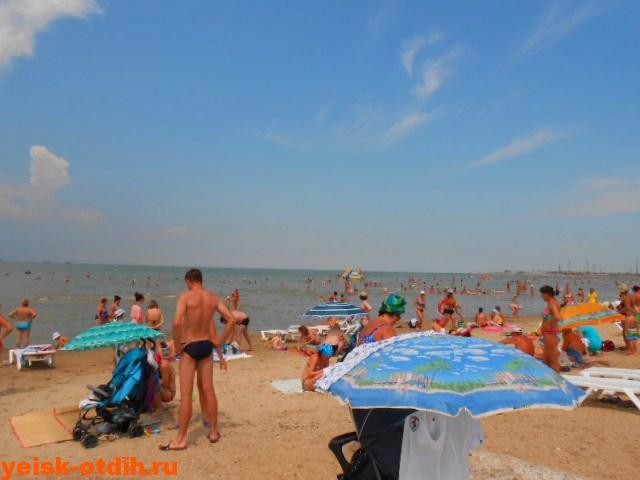 Ейск пляж таганрогского залива каменка фото