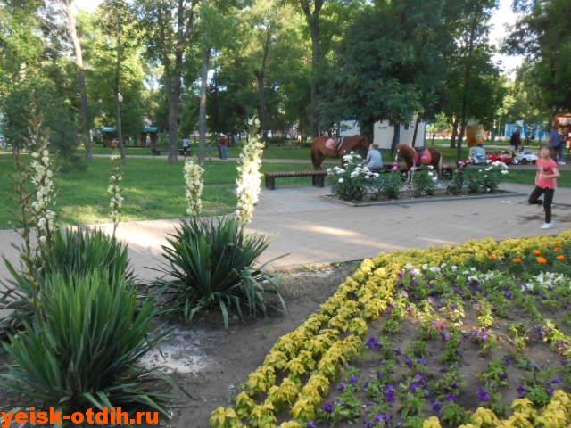 парк в центре Ейска