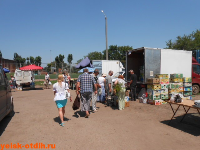 продажа продукции фермерами в ейске
