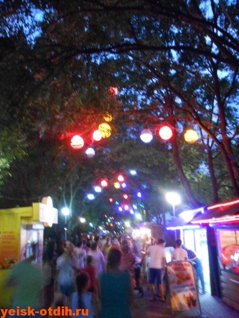 фонарики на деревьях город ейск