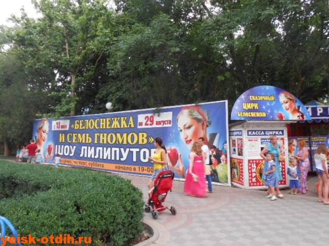 цирк в парке поддубного ейск