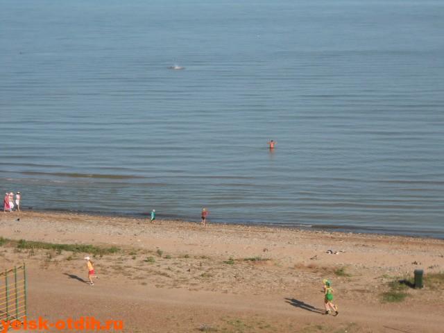 песчаный пляж ейск