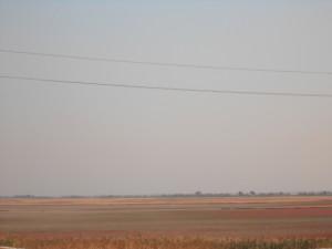 ханское озеро добыча лечебной грязи