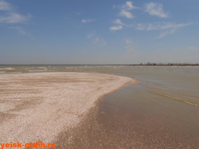 море коса сазальникская