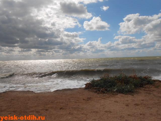Азовское море коса Долгая